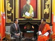 促进越南与不丹合作关系务实平稳发展