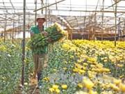 林同省区域建设规划获批