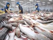 越南——世界最大的查鱼出口国