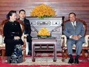 越南国会主席阮氏金银会见柬埔寨参议院主席赛宗