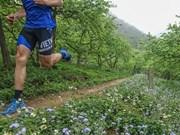 2019年越野马拉松赛即将在山罗省举行