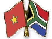 越南与南非加强教育领域的合作