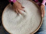 中国计划从柬埔寨进口40万吨大米