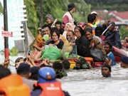印尼发生的洪涝和山体滑坡灾害造成八人死亡