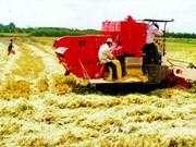 把永隆省建设成为现代工业、农业和服务业全面发展的省份