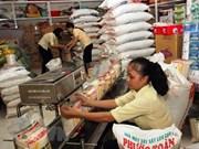 越南政府决定向全国9个省发放救济大米