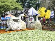胡志明市己亥新春花卉展今日开展