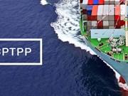 CPTPP正式生效 越南企业努力让挑战变成机遇