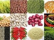 越南农产品出口创下新纪录