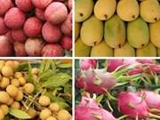 创新思维促进农产品对中国市场的出口