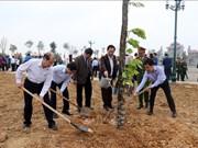 富寿和宁平等省举行植树活动启动仪式