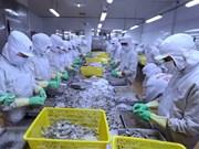 越南力争2019年虾类出口创汇40亿美元