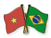 巴西同越南一道努力推动双边关系取得新的进展