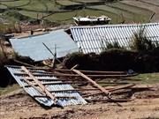 安沛省、老街和宣光三省遭受龙卷风和大暴雨袭击多间房屋受损