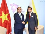 越南领导人致电祝贺文莱达鲁萨兰国国庆35周年