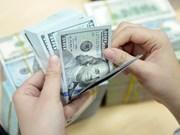 2月25日越盾兑美元中心汇率上涨5越盾