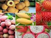 越南农产品力争征服高端市场