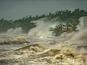 """越南作品在中国广州""""台风委员会区域天气和气候""""摄影比赛中荣获一等奖"""