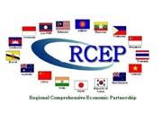 印度呼吁RCEP成员国灵活解决悬而未决的问题