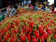 推动越南农产品和水产品对中国的正贸出口