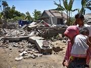 印度尼西亚为龙目岛地震灾后重建工作出力
