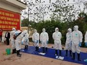 越南各地集中防范非洲猪瘟疫情的传播和蔓延