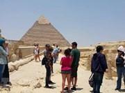 埃及安全动荡及非洲猪瘟疫肆虐  越南旅游总局向出境游组团社提出警示