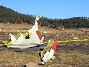 阮富仲就埃塞俄比亚坠机事故向该国总统致慰问电