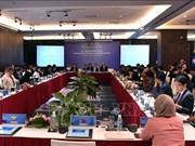 东盟地区论坛海洋安全中期工作组第十一次会议在岘港市开幕