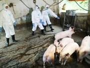 农业与农村发展部就非洲猪瘟疫情防控工作召开紧急会议