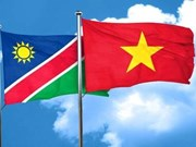 阮富仲就纳米比亚国庆29周年向纳米比亚总统致贺电