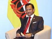 文莱苏丹哈桑纳尔即将对越南进行国事访问