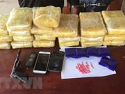 胡志明市公安局截获一辆藏着大量毒品的皮卡车