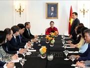 阮氏金银访法:与旅法越南人会面 向胡志明主席塑像献花