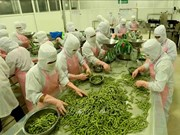安江省主要商品出口额增加