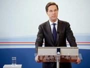 荷兰首相马克·吕特开始对越南进行正式访问
