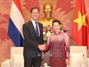 越南国会主席阮氏金银会见荷兰首相马克·吕特