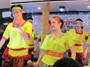 首届民间艺术节在胡志明市阮惠步行街举行