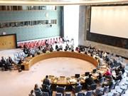 越南高度评价妇女在联合国维和事务中的作用