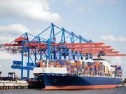 越南对捷克和罗马尼亚处于贸易顺差之势