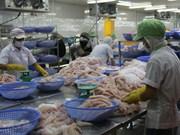 努力提高越南高质量查鱼在中国市场上的竞争力