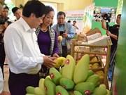 为越南庆和省芒果进入美国市场铺平道路