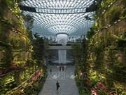 新加坡规模最大的室内花园--星耀樟宜机场投运