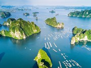 越南广宁省下龙湾跻身世界25大自然奇观行列
