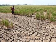 联合国-东盟联合报告:东南亚干旱情况未来可能会更加严重