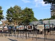 岘港市文化遗产空间图片展展示城市魅力