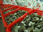 出口美国的31个越南虾类企业享受零关税待遇