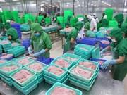 越南查鱼在进军国际市场的路上具有巨大优势