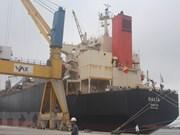 清化省举行国际集装箱班轮运输航线开航仪式