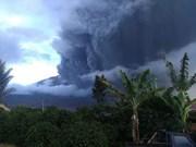 印尼向航空业发布危险预警